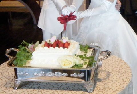 The cake_480.jpg